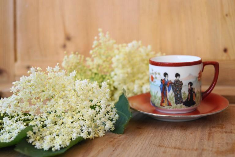 Holunderblüte, Tee Fotolia_99880087